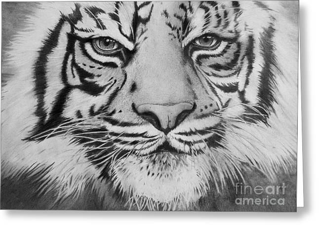 Tiger's Eyes Greeting Card
