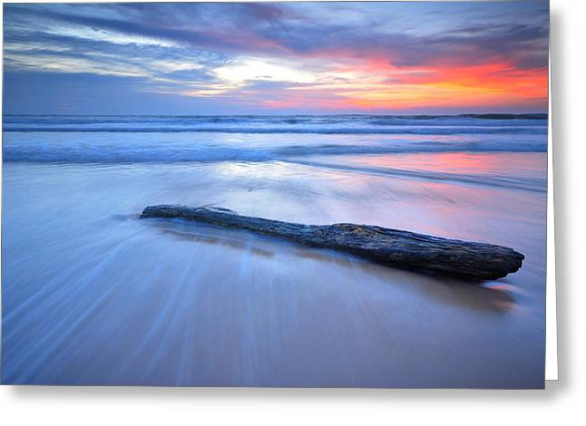 Timber On The Beach Greeting Card by Teerapat Pattanasoponpong
