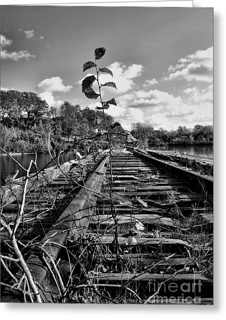 Time Marches Greeting Card by Craig Ebel