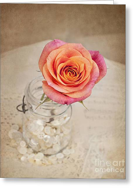 Greeting Card featuring the photograph Timeless Beauty by Cheryl Davis