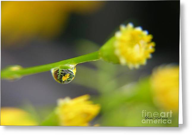 Greeting Card featuring the photograph Tiney Drop by Yumi Johnson