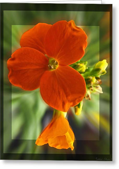 Greeting Card featuring the photograph Tiny Orange Flower by Debbie Portwood