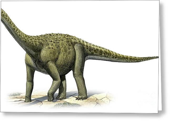 Titanosaurus Indicus, A Prehistoric Era Greeting Card by Sergey Krasovskiy