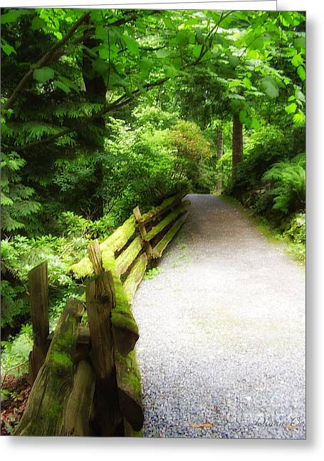 To Walk The Path Greeting Card by Diana Cox
