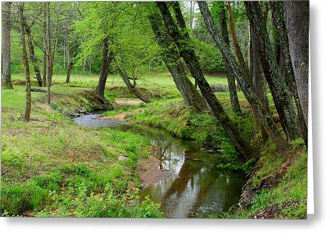 Greeting Card featuring the photograph Toms Creek In Early Spring by Kathryn Meyer
