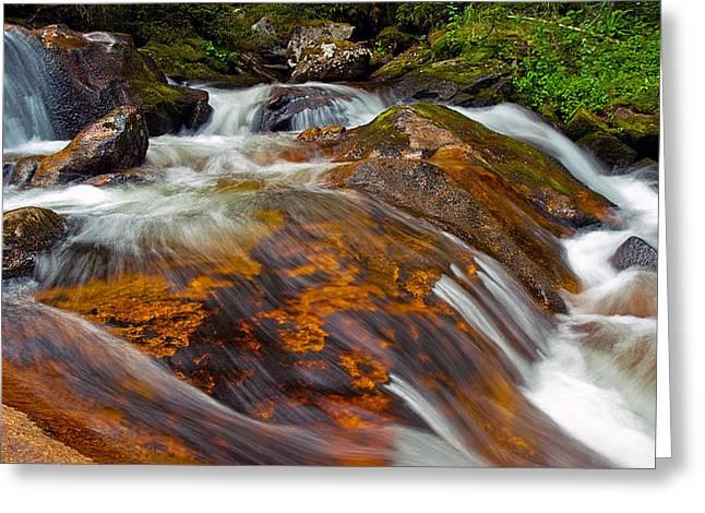 Tonahutu Creek Greeting Card by Brian Kerls