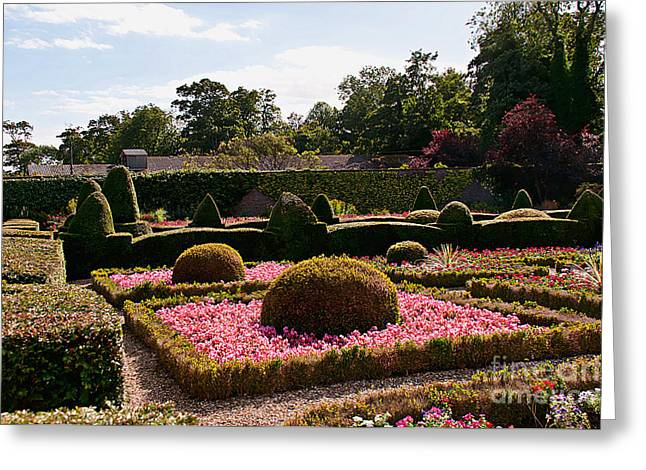 Topiary And Flower Beds 2 Greeting Card