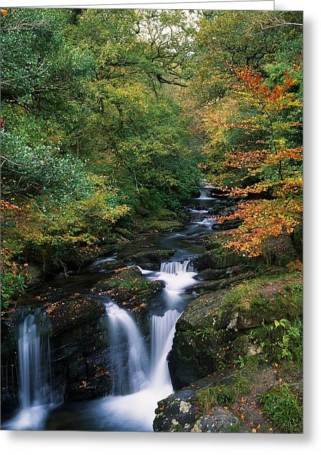 Torc Waterfall, Ireland,co Kerry Greeting Card by The Irish Image Collection