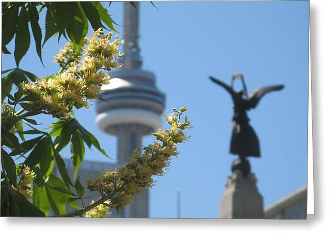 Toronto Spring Greeting Card by Alfred Ng