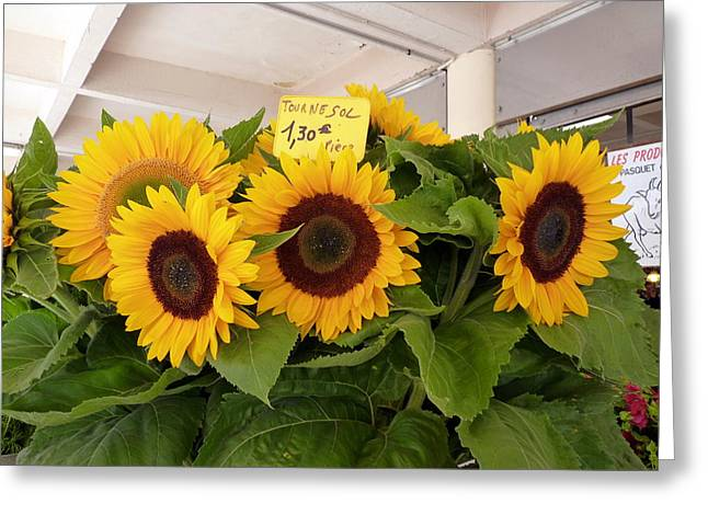 Greeting Card featuring the photograph Tournesol by Carla Parris