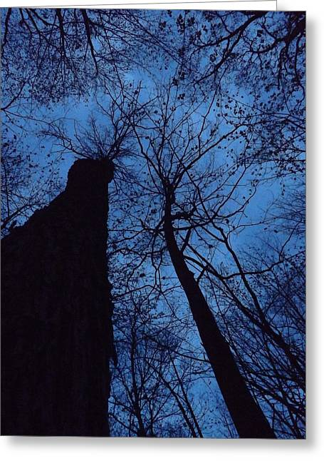 Towering Into The Night Greeting Card