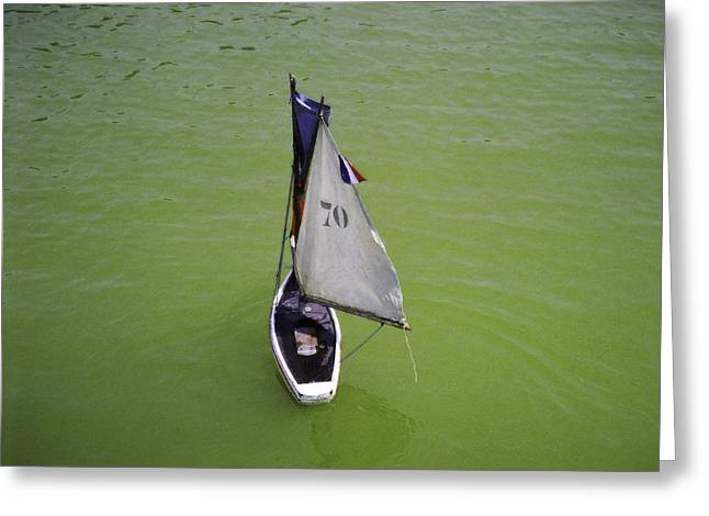 Toy Sailboat On Pond Greeting Card by Donna Munro