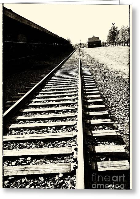 Tracks Of Our Ancestors Greeting Card by Leslie Leda