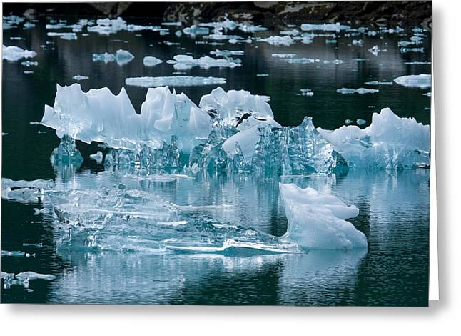 Tracy Arm Fjord Ice One Greeting Card