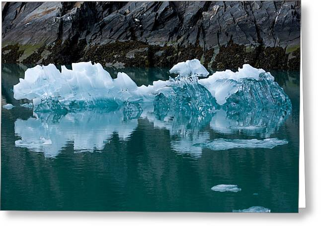 Tracy Arm Fjord Ice Two Greeting Card