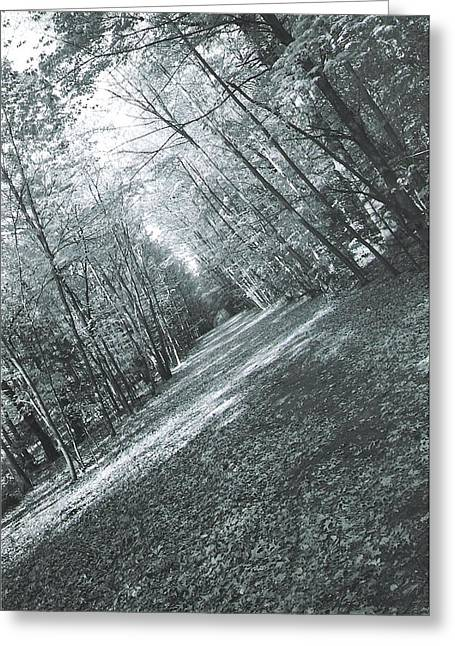 Trail Greeting Card by Ronald Mcduff