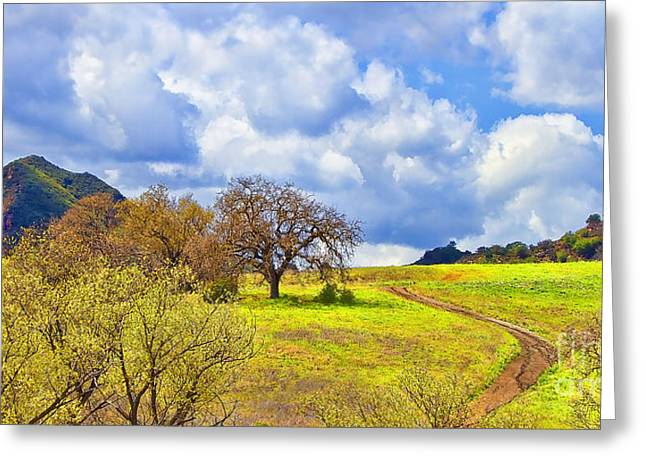 Trail To Nowhere Greeting Card by Jason Abando