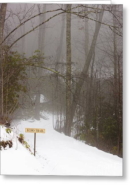 Trailhead Covered With Snow Greeting Card by Will and Deni McIntyre