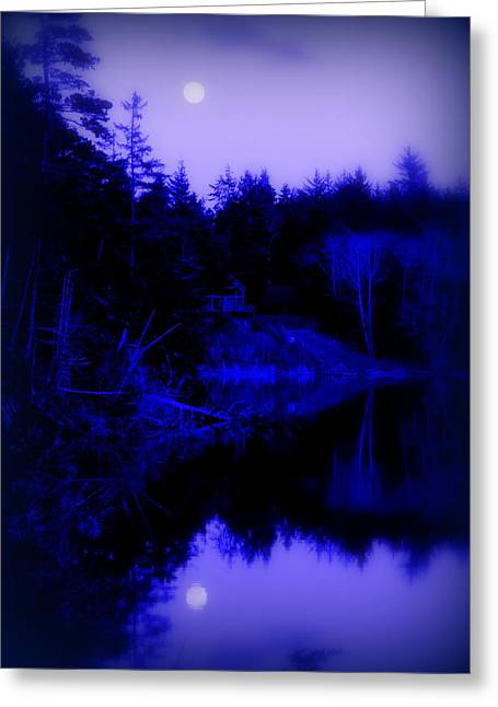 Tranquil Blue Moons Greeting Card by Cindy Wright