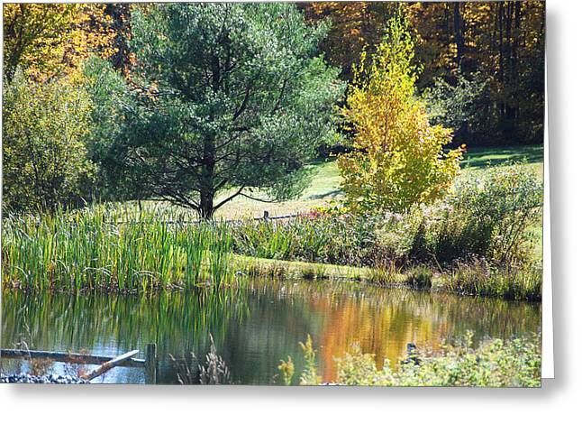 Greeting Card featuring the photograph Tranquil by John Schneider