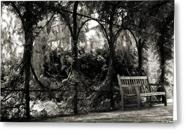 Tranquil Leaf Covered Walkway In Black And White Greeting Card