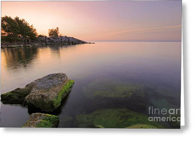 Tranquil Morning Greeting Card by Charline Xia