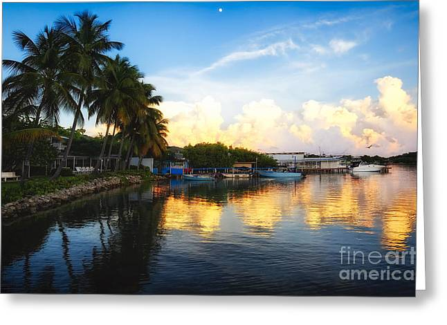 Tranquil Sunset In La Parguera Greeting Card by George Oze