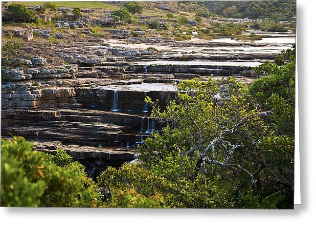 Transkei Terrace Greeting Card by Miguel Capelo