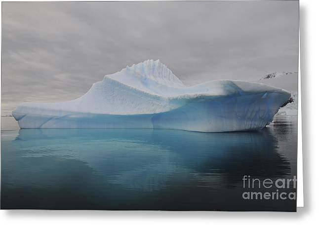 Translucent Blue Iceberg Reflection Greeting Card by Mathieu Meur