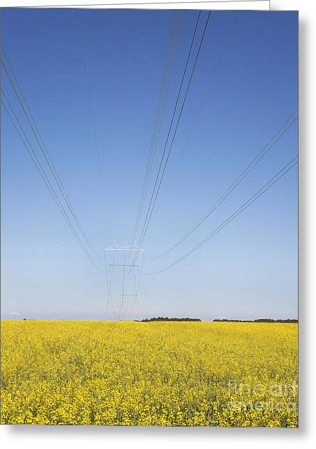 Transmission Towers And Power Lines Greeting Card by Jaak Nilson