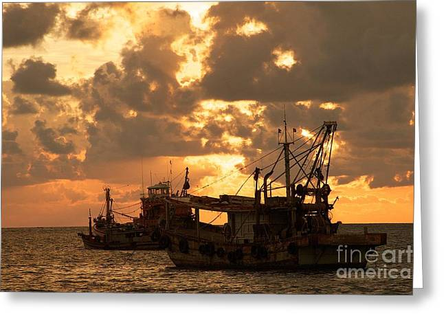 Trawlers  Greeting Card by Gary Bridger