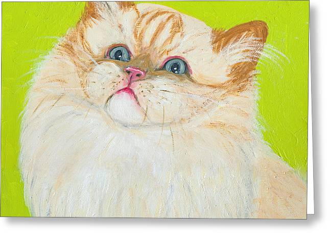 Treat Please Greeting Card
