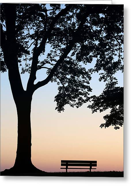 Tree And Bench Silhouette Greeting Card by Darwin Wiggett