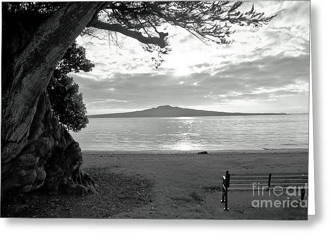 Tree And Ocean And Bench And Volcano Greeting Card