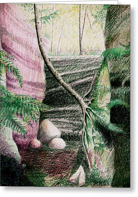 Tree Clinging To Rock Wall Greeting Card by MB Matthews