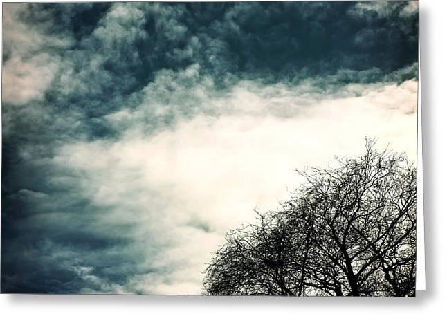 Tree Crown Greeting Card by Joana Kruse
