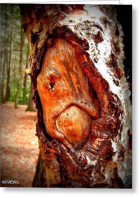 Tree Face Greeting Card by Vix Views