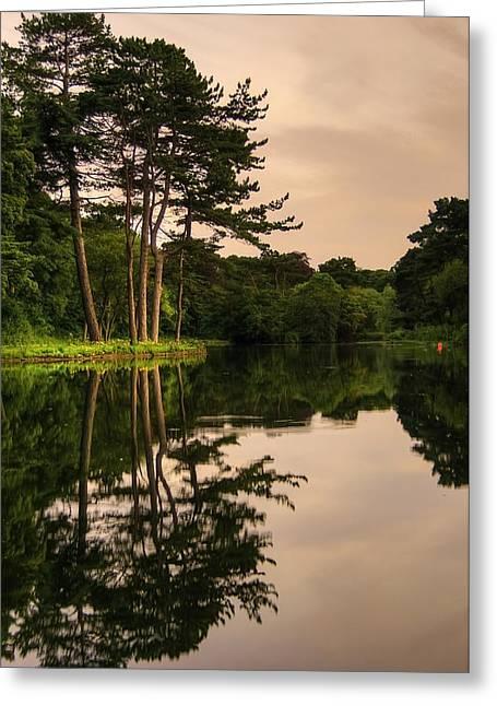 Tree Island Greeting Card by Svetlana Sewell