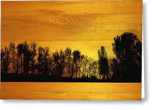 Tree Line On Wood Greeting Card by Ann Powell