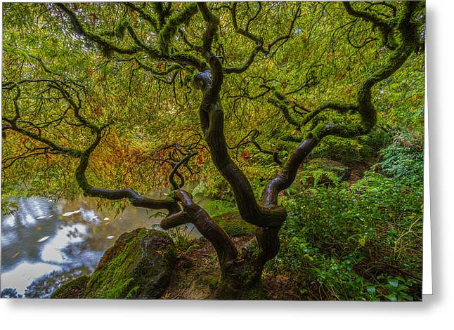 Tree Of Life Greeting Card by Ken Stanback