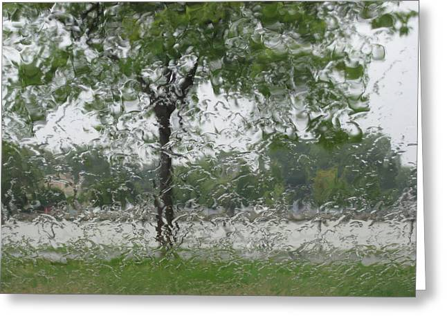 Tree Of Life Stands In A Storm Greeting Card by Judy Via-Wolff