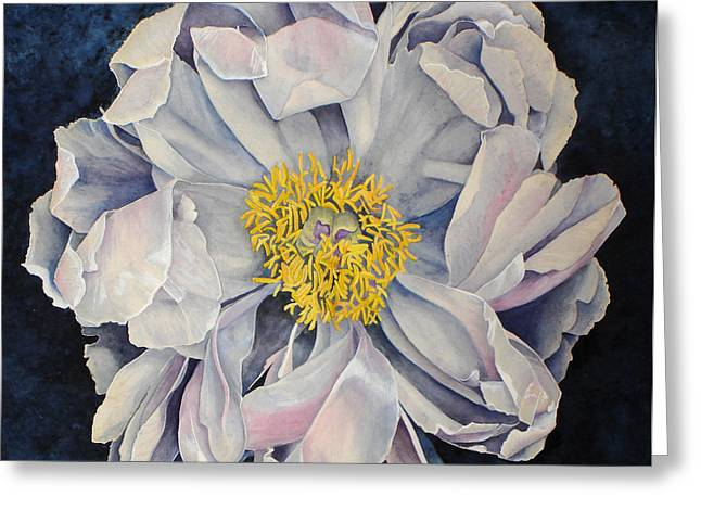Tree Peony Greeting Card by Yvonne Scott