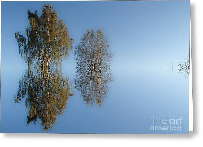 Tree Reflection In Vaerebrovej Greeting Card by Michael Canning