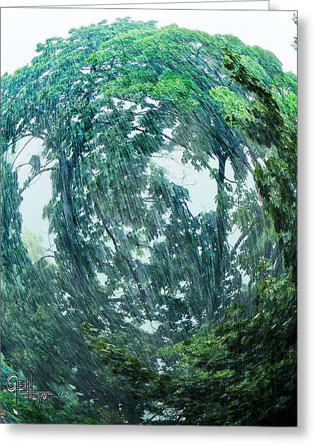Tree Swirl Heavy Rain  Greeting Card by Glenn Feron