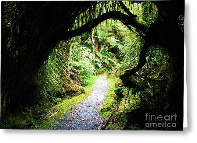 Greeting Card featuring the photograph Tree Tunnel by Michele Penner