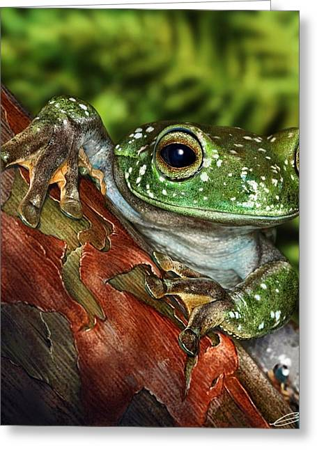 Treefrog  Greeting Card by Owen Bell