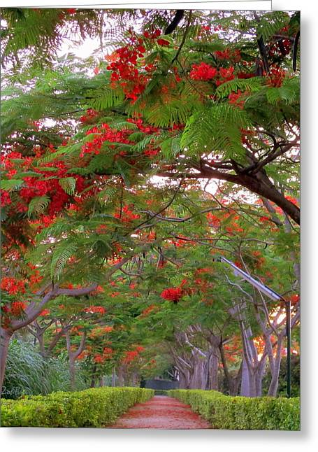Trees And Flower In Autumn Start Greeting Card by Zoh Beny