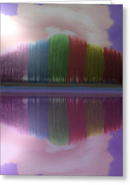 Trees With Color And Light Greeting Card