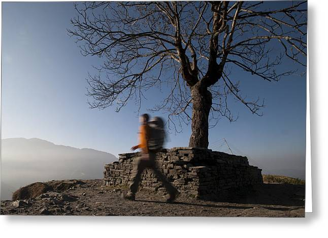 Trekking Around A Tree With A Stone Greeting Card by Alex Treadway