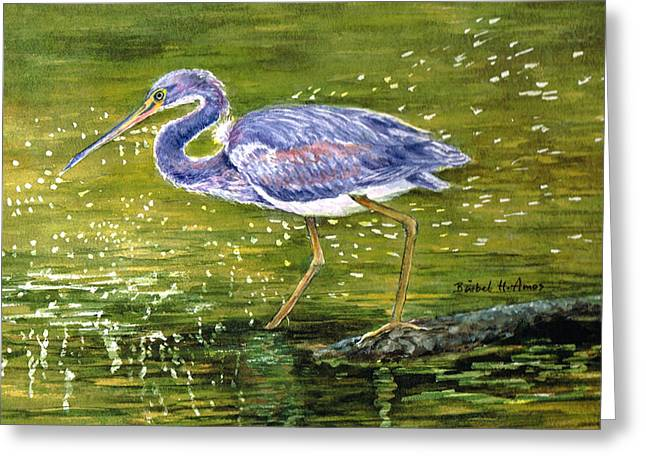 Tri Colored Heron Greeting Card